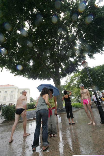 Iepe, Singapore Miracle Tree