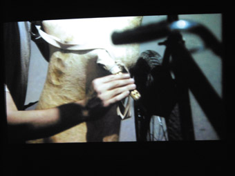 here is More Than One Way to Skin a Sheep (video still), Jennifer Allora (US) & Guillermo Calzadilla