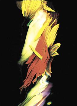 """Huang Po-Chih, Flov""""er, 2006 (video still), courtesy the artist"""