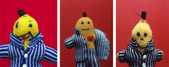 David Wills,  B3, 18 images of handknitted Bananas in Pyjamas found in Op shops, garage sales and markets