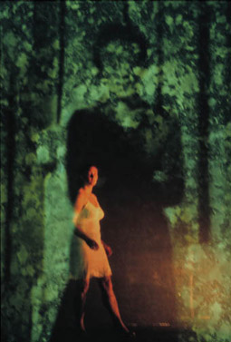 Leisa Shelton, The Inhabited Woman