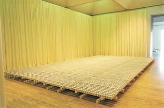 RAFT (2005), with Paul Carter, collection Art Gallery NSW