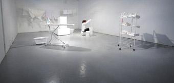 Philippa Steele, White Wash