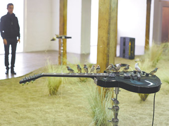 Céleste Boursier-Mougenot, From Here to Ear (2009), mixed media, Long Gallery, Hobart,