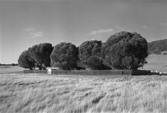 The Healing Garden, Wybalenna, Flinders Island, Tasmania from Portrait of a Distant Land, 2005. silver gelatin print