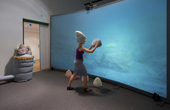 Metazoa, Angela Main, Super Human Exhibition, RMIT Gallery