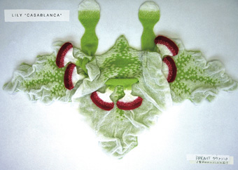 Casablanca, lily a/w 2005, Yoshiki Hishinuma, The Endless Garment