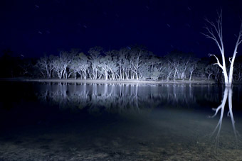 Lake Mungo, Mungo Productions, 2009