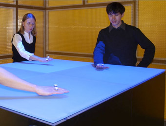 Christa Sommerer and Laurent Mignonneau, 2002, Nano-Scape: user 06, supported by Volkswagenstiftung, Hannover