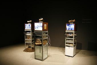 Boo Chapple, Transjuicer, 2009, installation view, John Curtin Gallery, 2010