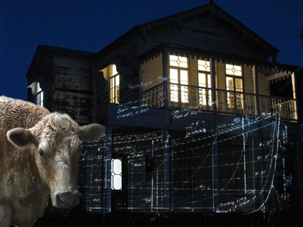 Lyndal Jones, Rehearsing Catastrophe #1: The Ark in Avoca