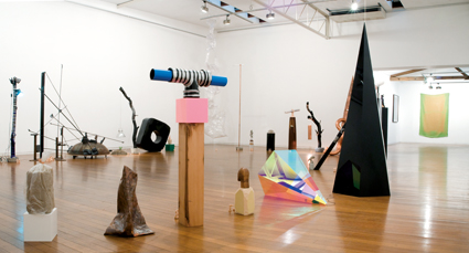 Mikala Dwyer, Outfield 2009 Installation view, Roslyn Oxley9 Gallery, Sydney