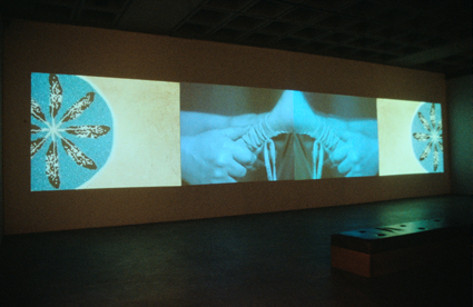 Dana Claxton, Rattle, 2003, installation view
