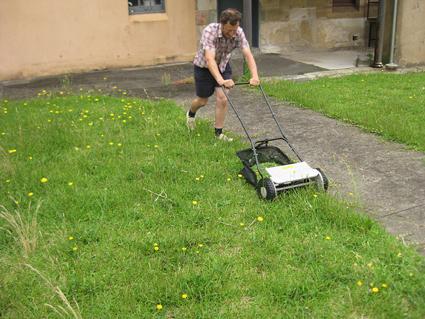 Grass, Tending