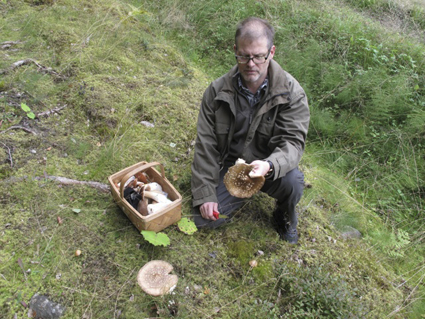 Sound Artist and Curator of the Turku is Listening programme, Simo Alitalo gathering fungi in the woods