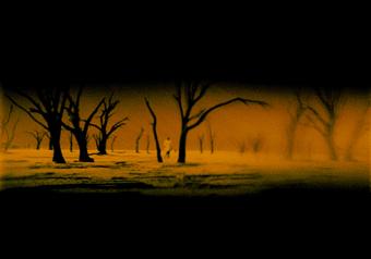 Clare Langan, Too Dark for Night