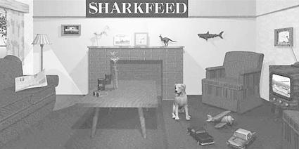 Sharkfeed