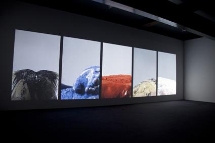 Wang Gongxing, Basic Colour (2010)