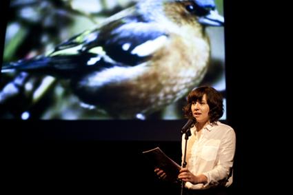 Emma Bennett, Slideshow Birdshow, IBT13