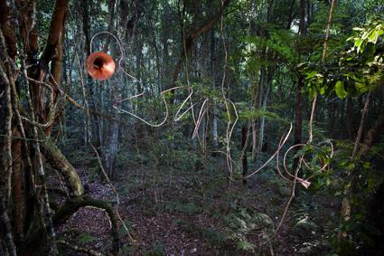 Darragh O'Callaghan, Serosa , Sculpture at Scenic World