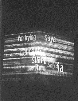 Hasnul Jaimal Saidon, I'm Trying to Locate, black & white video projection