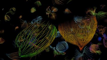 Paula Dawson, Hyperobject, My Homeland (detail), 2013, production still for holographic digital print