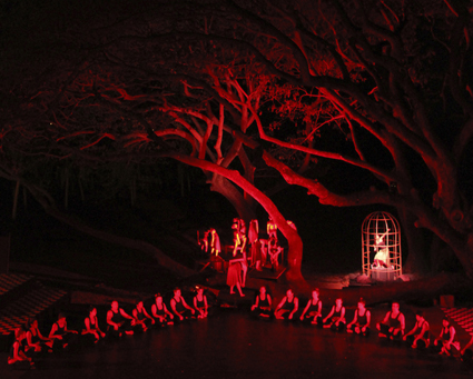 Zombies in the Banyan Tree, Tracks Dance Company