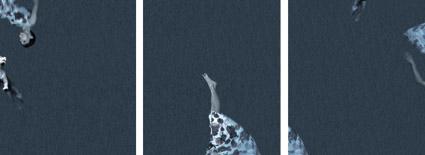 Mary Scott, Blue Joke (triptych), 2003