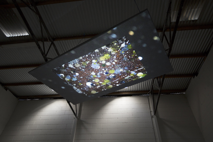 Chris Bennie, Fern Studio Floor: a cosmology