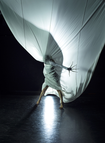 A Delicate Situation, Lina Limosani