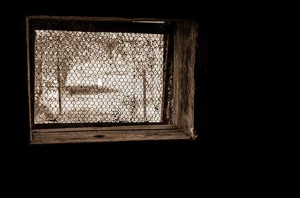 Promotional image,  Window