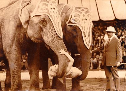 Maggi Phillips, 1969, KNIE Circus Switzerland