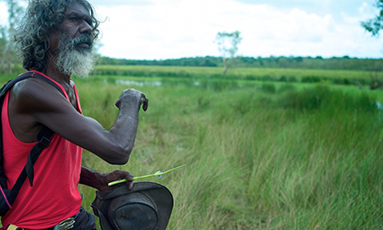 David Gulpilil, Another Country