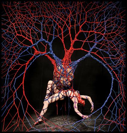 Blood Consciousness, Garth Knight