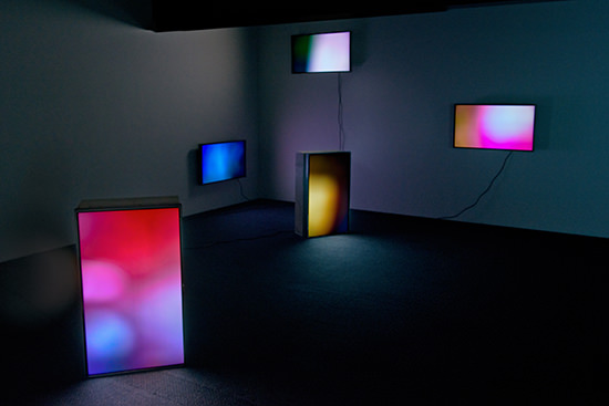Taeyoon Kim, Steady Griffins, five-channel video, random loop, colour, no audio, 2014,