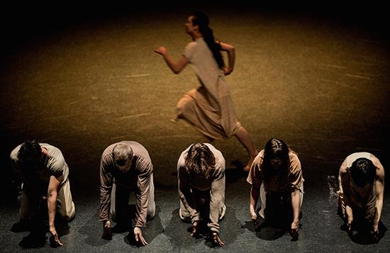 Spectra, Dancenorth